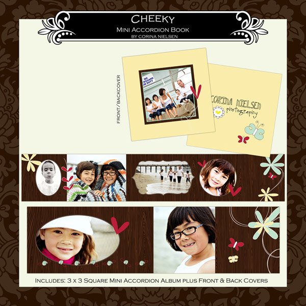 "3 x 3 Mini Accordion Album- ""Cheeky"""