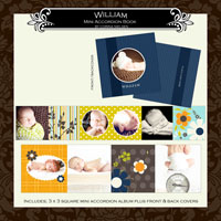 "3 x 3 Mini Accordion Album- ""William"""