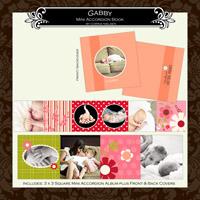 "3 x 3 Mini Accordion Album- ""Gabby"""