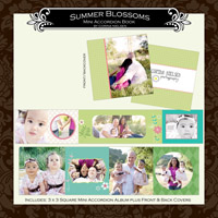 "3 x 3 Mini Accordion Album- ""Summer Blossoms"""